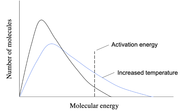 Effect of temperature on the energy of molecules in a chemical system