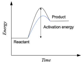 Effect of catalyst on the energy profile of a reaction
