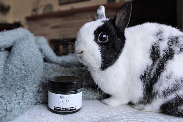 Why Cruelty-free isn't just a slogan for us... - Bella Vida SB | Luxury Clean Skincare