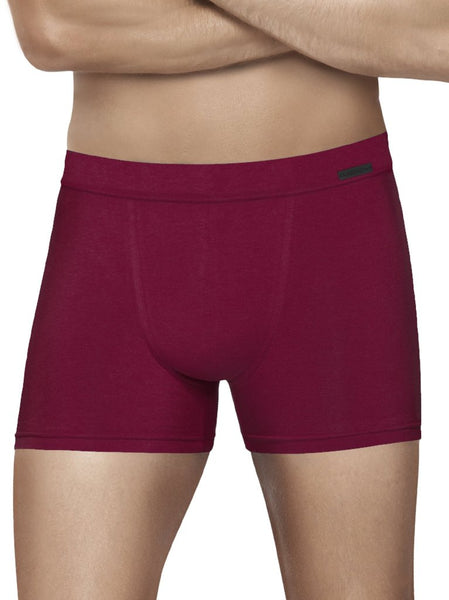 Stretch Boxer Brief with Inside Elastic