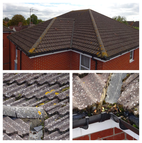 Roof survey of guttering, flashing and tiles by camera pole from Vantage Point Products