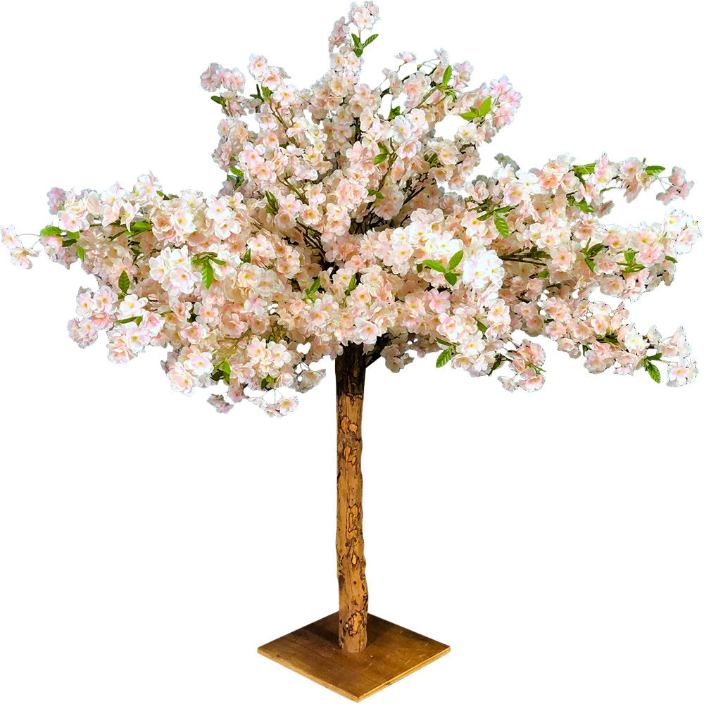 Cherry Blossom Tree 1.2m H (Pink, Upright)