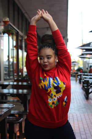Red Africa map sweater jersey