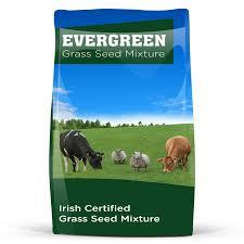 1 Acre Bag Evergreen Dual Purpose Grass Seed