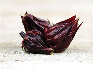 Red Roselle