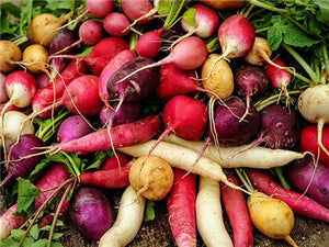 Easter Basket Mix Radish