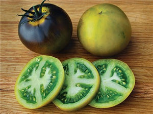 Wagner Blue Green Tomato