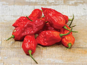 Bhut Jolokia, Red or Ghost Pepper