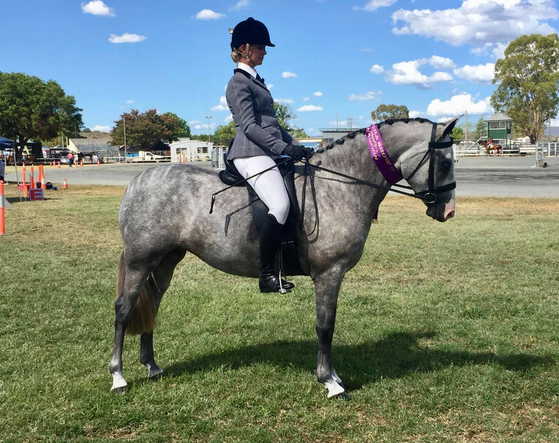 Riding for 2 - Tammy Patch's Equestrian Pregnancy Journey.