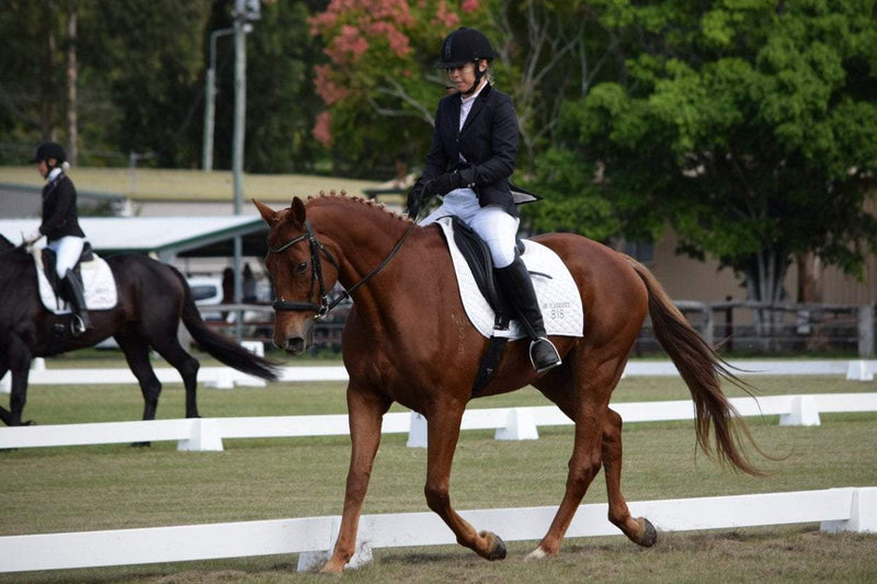 Calming your OTTB at a Show, with Melissa Rose.