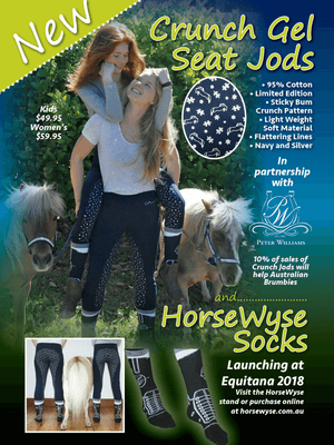 Ladies in Crunch Pull On Jodhpurs