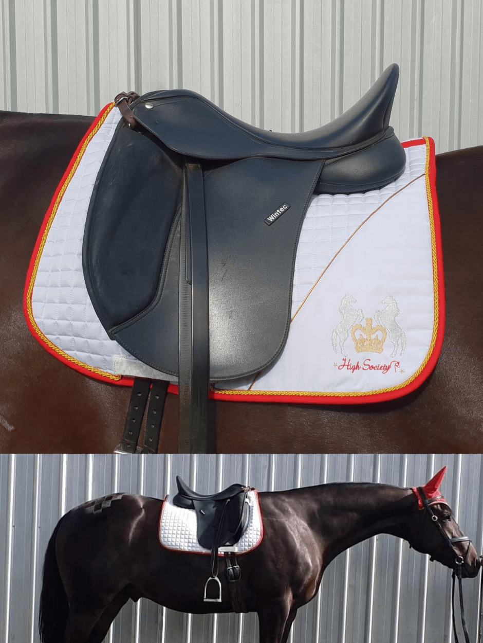 High Society Saddle Pad