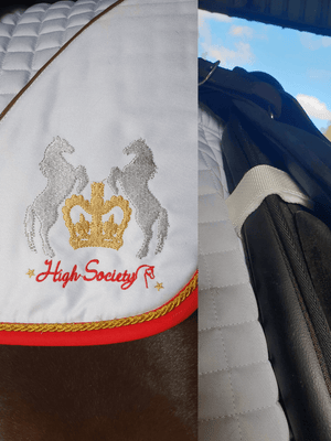 Horse wearing High Society Saddle Pad