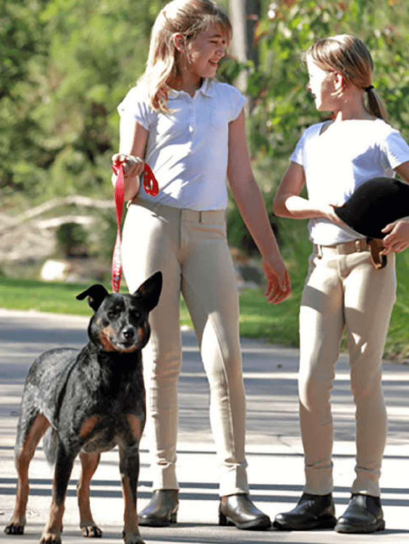 Children wearing Full suede seat pull on jodhpurs in beige