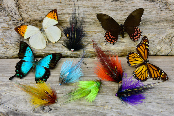 12-pack Black & Silver Butterfly