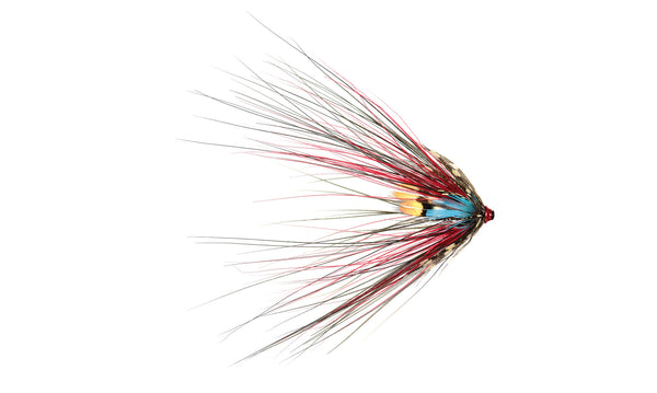6-pack Black Doctor Spey