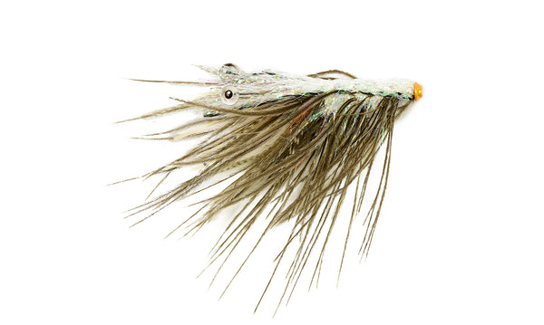 6-pack Spey Shrimpy