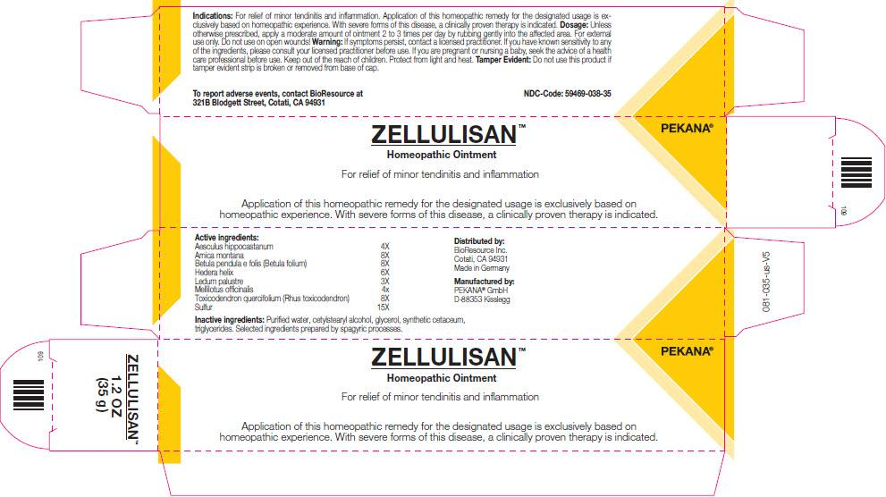 Zellulisan Ointment 100 grams by BioResource - Earthly Nutrition