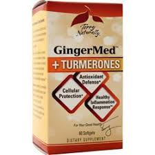 Gingermed + Turmerones Terry Naturally