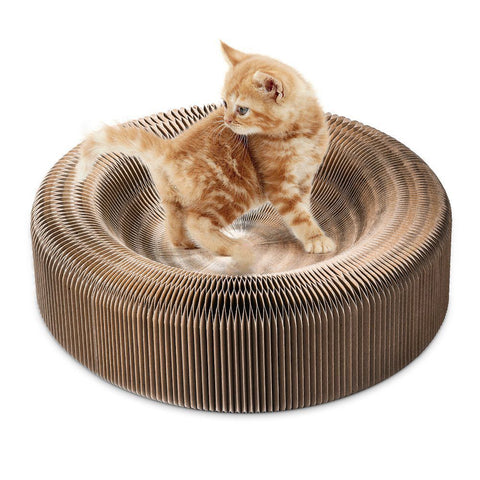 Portable Cat Scratcher