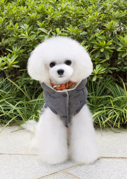 Dog Winter Pet Dog Jacket
