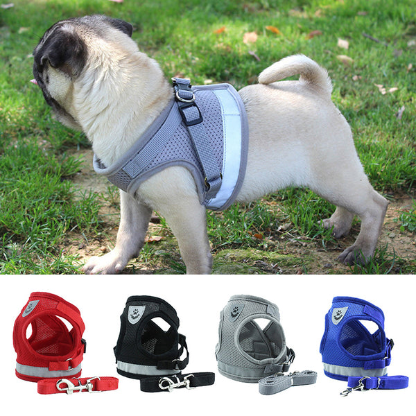 Dog Harness for Chihuahua