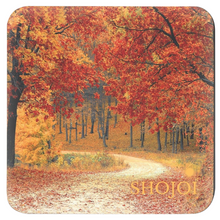 Load image into Gallery viewer, Fall Landscapes Coaster Set
