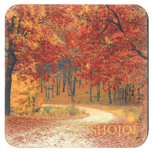 Fall Landscapes Coaster Set