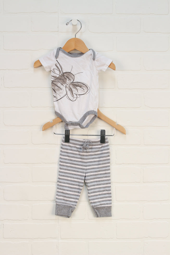 Outfit: Organic Bee Set (Size NB) 2 Pieces