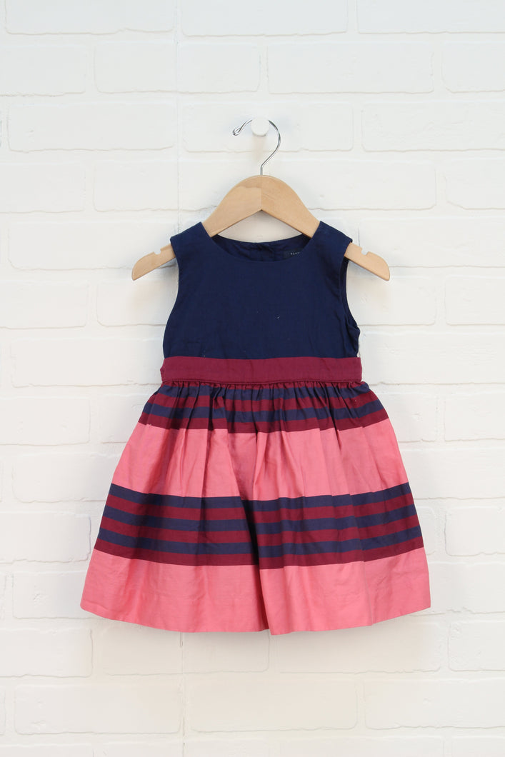 Navy + PInk Party Dress (Size 18M)