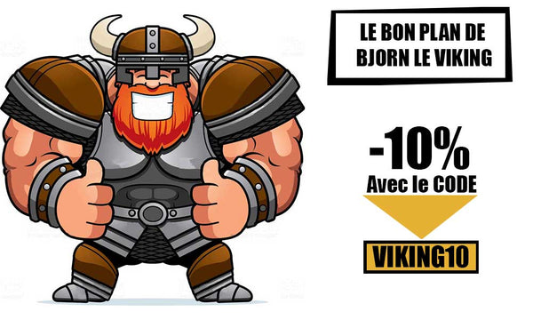 Bon Plan Invasion Viking Shop