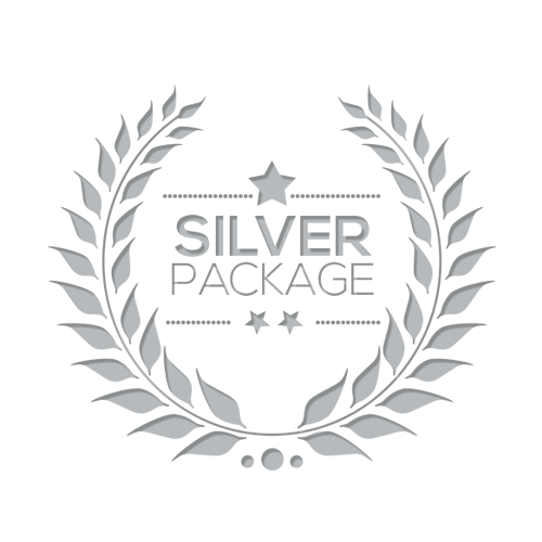 Logo Design - Silver Package