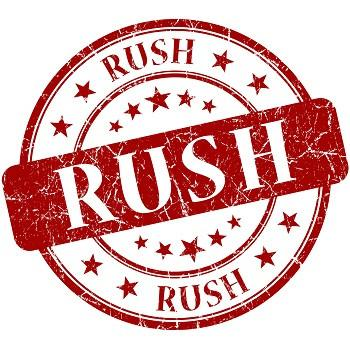 RUSH!!! - 48 HOURS OR LESS +$100