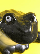 Load image into Gallery viewer, Super sparkly fun time frog
