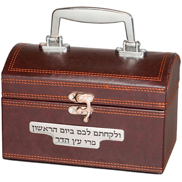 Esrog Box: Faux Leather Brown With Handle