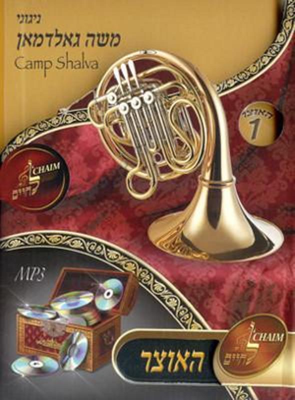 Moshe Goldman Camp Shalva (MP3)