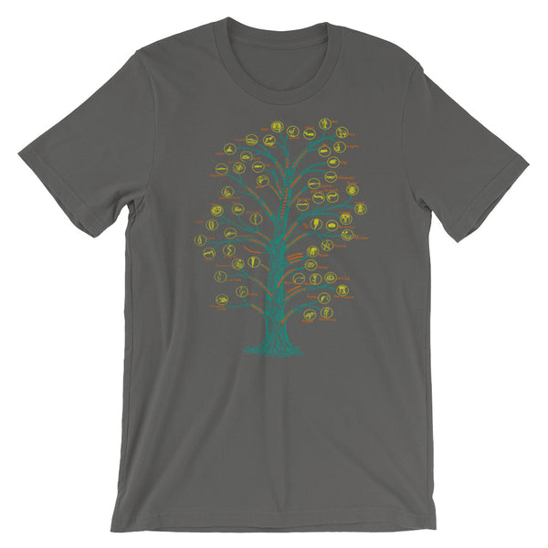 Evolution T-shirt Tree of Life Graphic Science Chart T-shirt grey babbletees