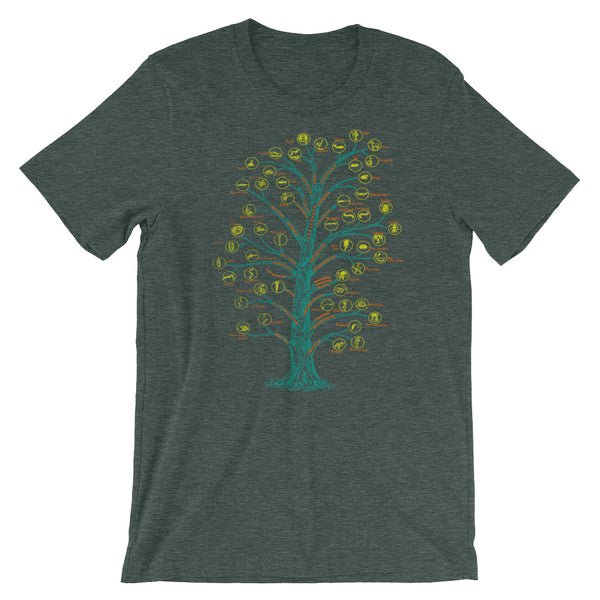 Evolution T-shirt Tree of Life Graphic Science Chart T-shirt green babbletees