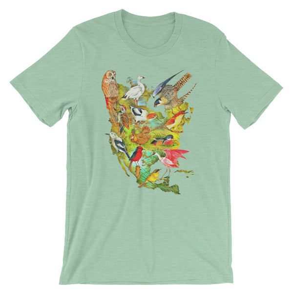 Birds of North America T-shirt Colorful Vintage Audubon Bird Illustration Graphic Tee light blue heather babbletees