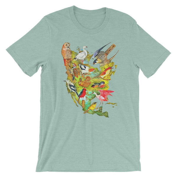 Birds of North America T-shirt Colorful Vintage Audubon Bird Illustration Graphic Tee heather blue babbletees