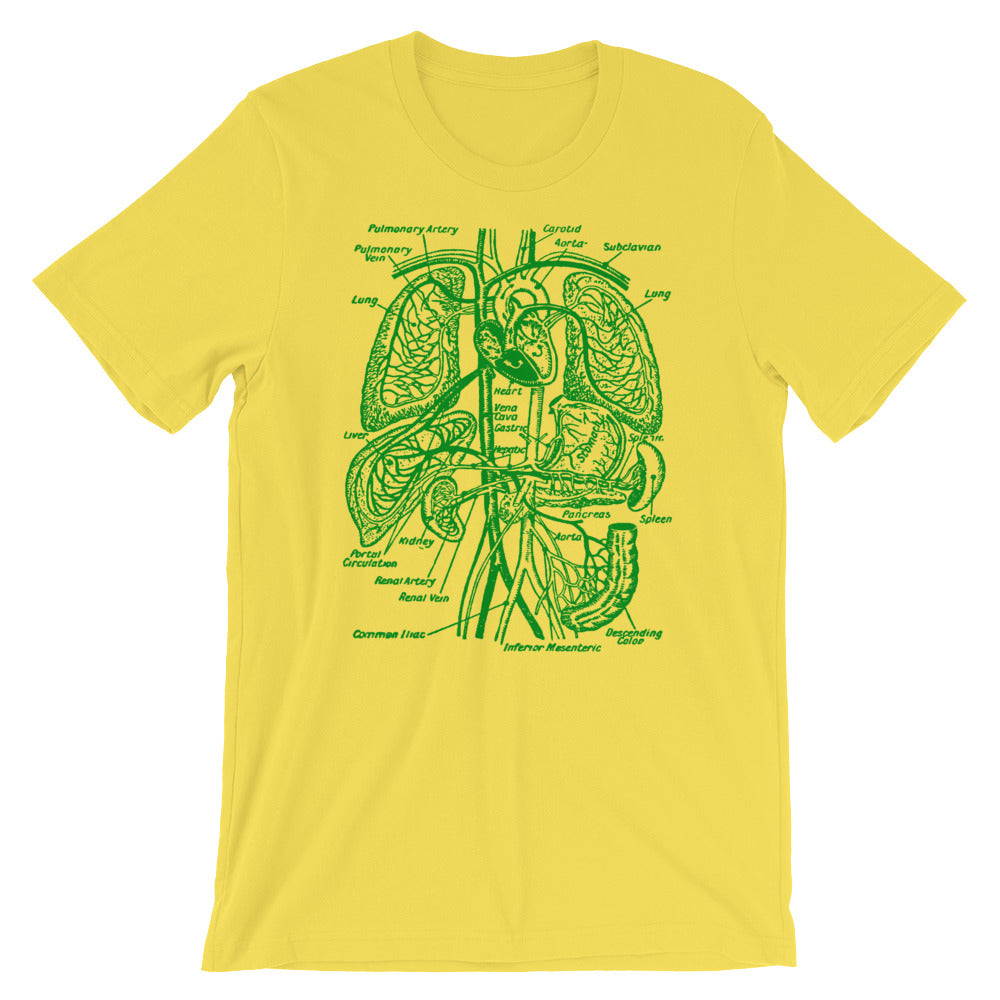Organs Vintage Anatomy Graphic Tee shirt Short-Sleeve Unisex T-Shirt - babbletees