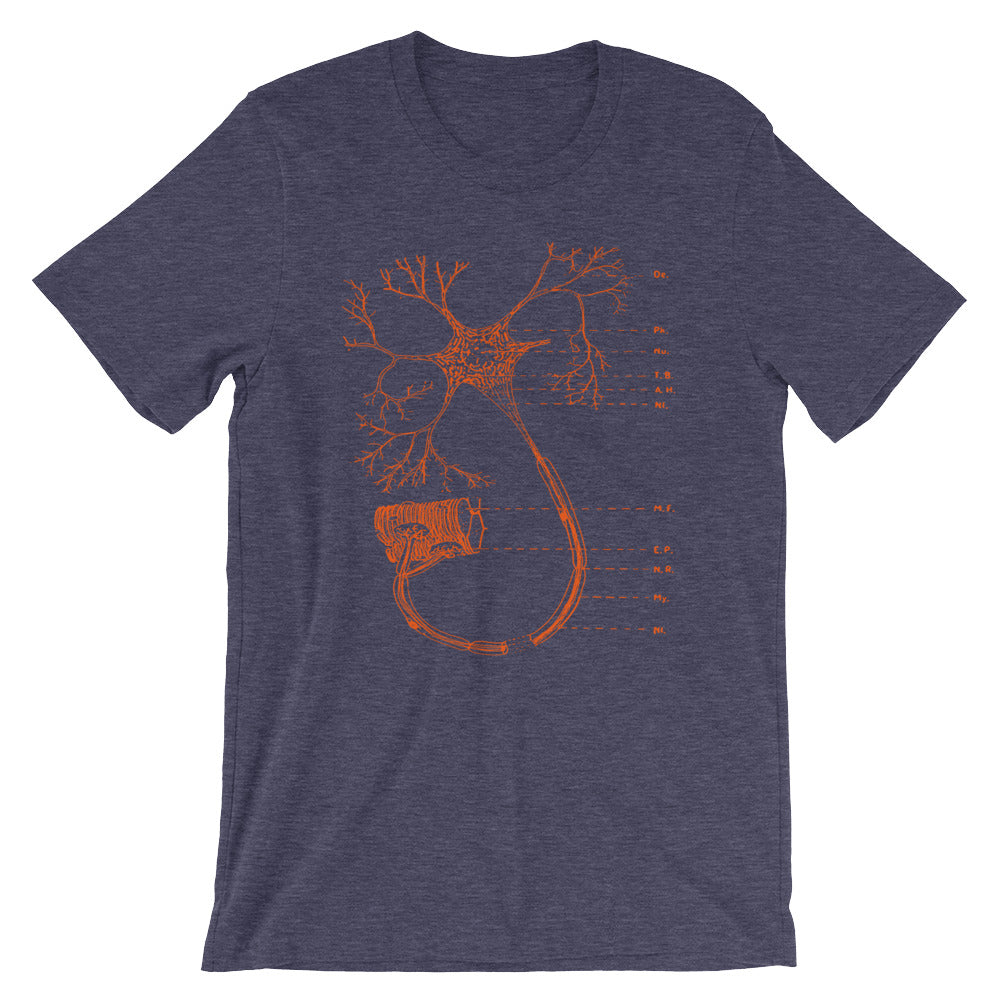 Nerve Diagram Science Tee Synaptic Lovebug T-shirt Biology Graphic - babbletees