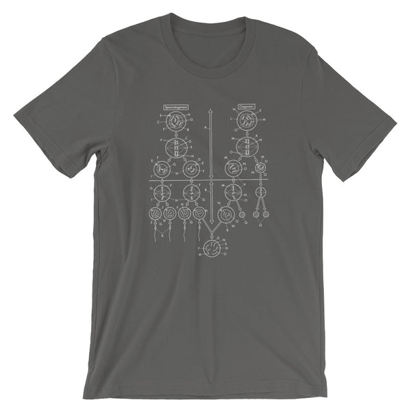 Meiosis T-shirt Sex Science Graphic Tee Biology Diagram Shirt babbletees grey