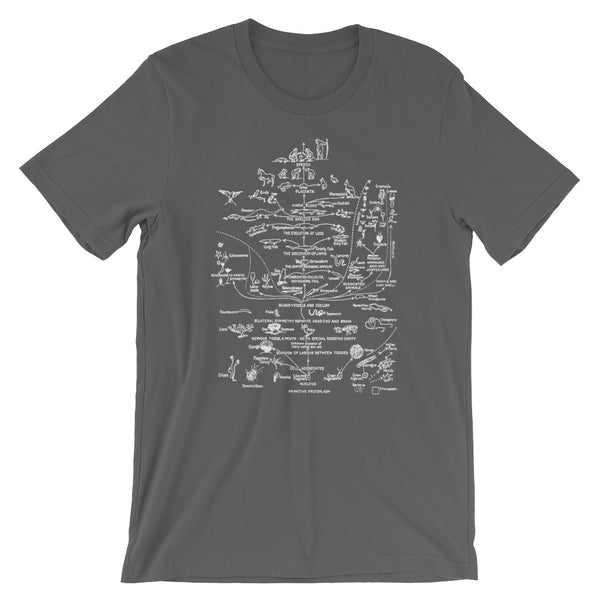 Darwin Evolution T-shirt Vintage Science tee shirt - babbletees