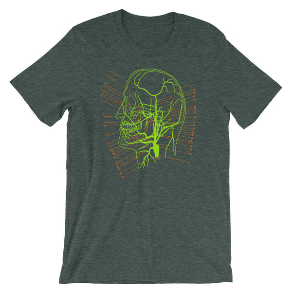 Brain Anatomy T-shirt Vintage Science Illustration of Skull Map Graphic Tee heather green babbletees