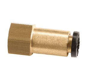 "31145614DOT Dixon Legris D.O.T. Push-In Fitting - Straight Female Connector - 1/4"" Tube OD x 1/4"" Female NPT (Pack of 10)"
