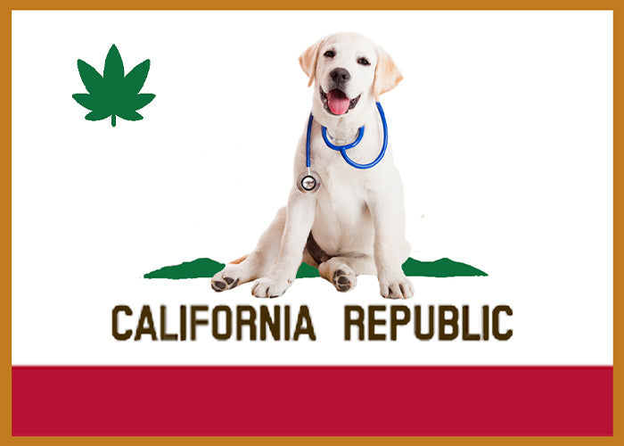 Pot for Pets Legalized in California 2019