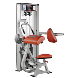 Tricep Extension P-3100