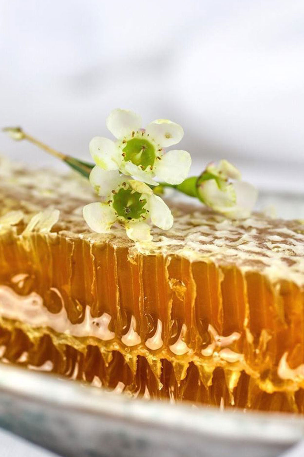 Hum Honey Pure Raw Cold Extracted Honey with Comb 250gm - Kabana Shop