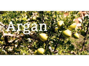 Ingredient Spotlight: Argan Oil